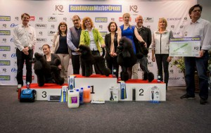 Scandinavian master groom 2015